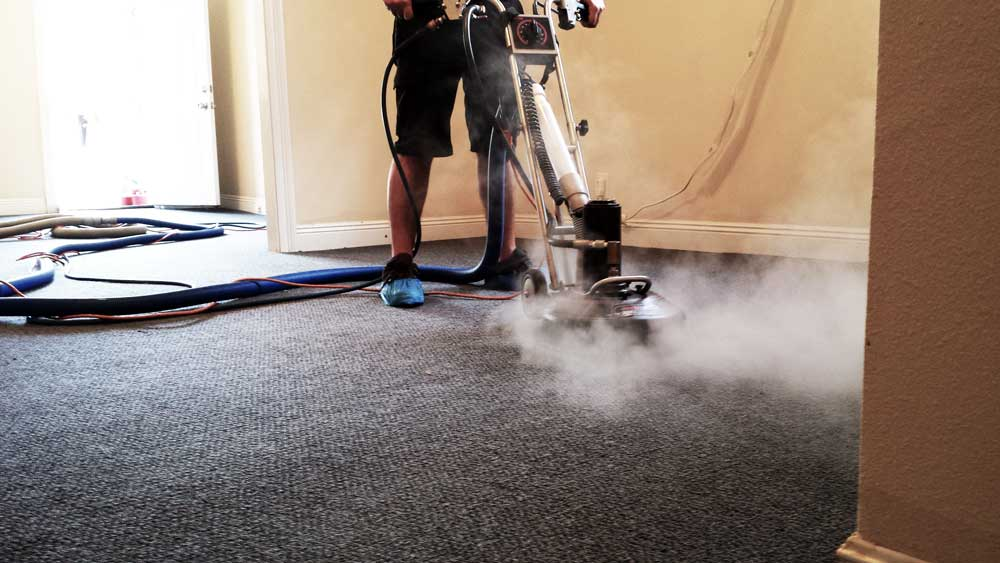 steam carpet cleaning new orleans